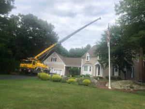 Crane at residence