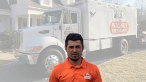 Luis Tree Care Professional
